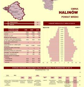 Statystyczne  Vademecum Gminy Halinów - 2011 strona 1