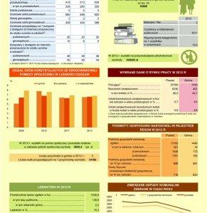 Statystyczne  Vademecum Gminy Halinów - 2013 strona 3