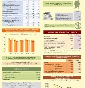 Statystyczne  Vademecum Gminy Halinów - 2015 strona 3