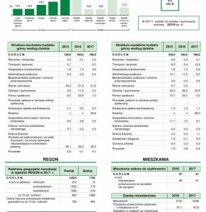 Statystyczne Vademecum Gminy Halinów - 2018 strona 2