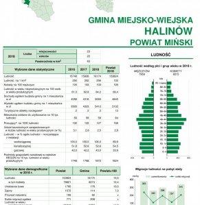 Statystyczne  Vademecum Gminy Halinów - 2019 strona 1