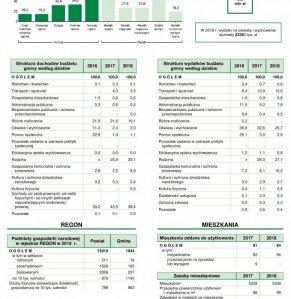 Statystyczne  Vademecum Gminy Halinów - 2019 strona 2